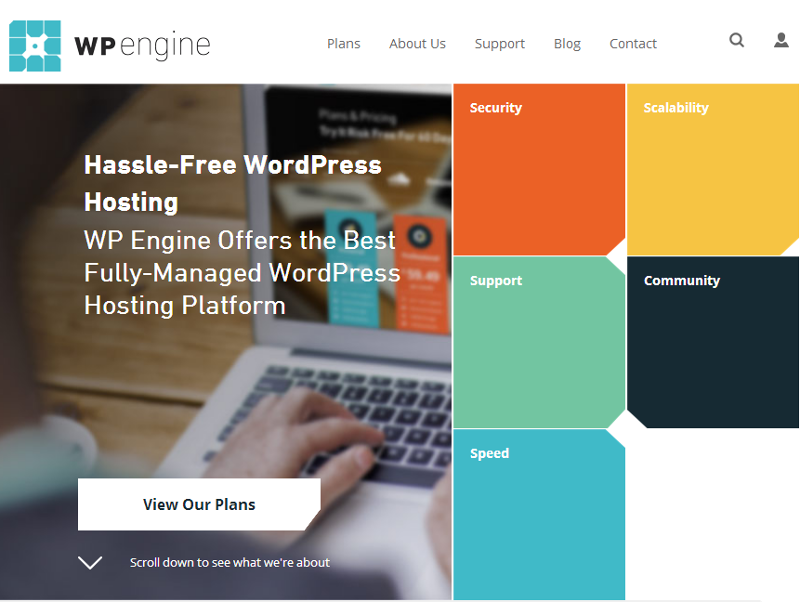 WordPress Hosting & Managed WordPress Hosting